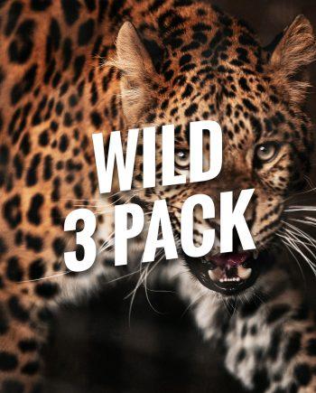 Wild Bracelets 3 Pack